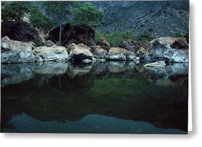 Santa Ynez River Greeting Card by Soli Deo Gloria Wilderness And Wildlife Photography
