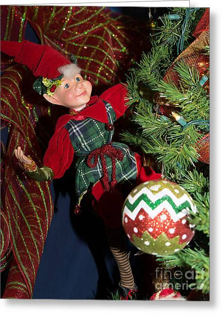 Santas Little Helper In Petaluma California Usa Dsc3767 Greeting Card by Wingsdomain Art and Photography