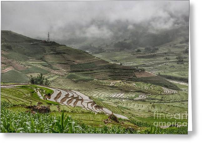 Sapa Greeting Card by Jack Ebnet
