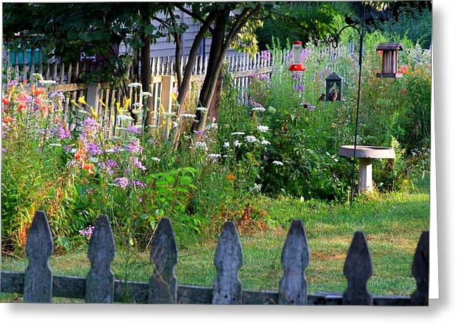 Back Yard Birds Greeting Cards - Saras Back Yard Greeting Card by Michael L Kimble