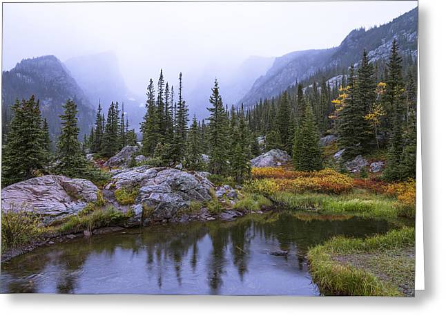 Waterscape Greeting Cards - Saturated Forest Greeting Card by Chad Dutson