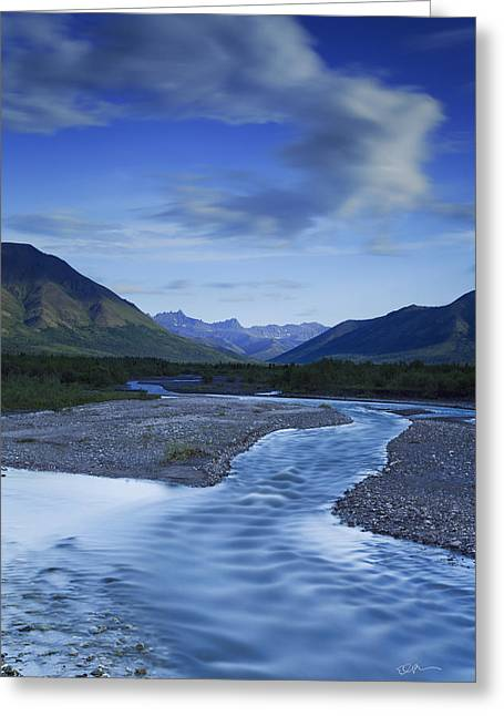 Denali National Park Greeting Cards - Savage Creek Greeting Card by Ed Boudreau