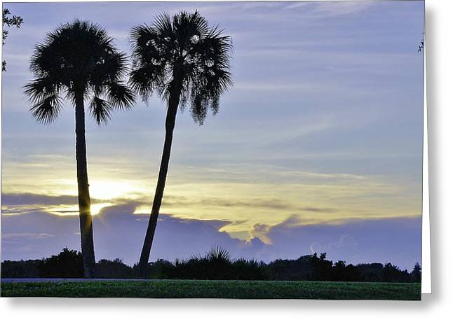 Wibada Photo Greeting Cards - Savanna Sunrise Greeting Card by Don Youngclaus