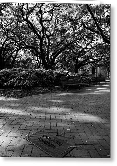 Walk Paths Greeting Cards - Savannah Georgia 5 Greeting Card by A Different Brian Photography