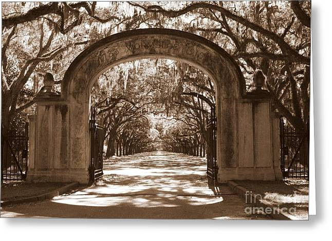 Old South Greeting Cards - Savannaha Sepia - Wormsloe Plantation Gate Greeting Card by Carol Groenen