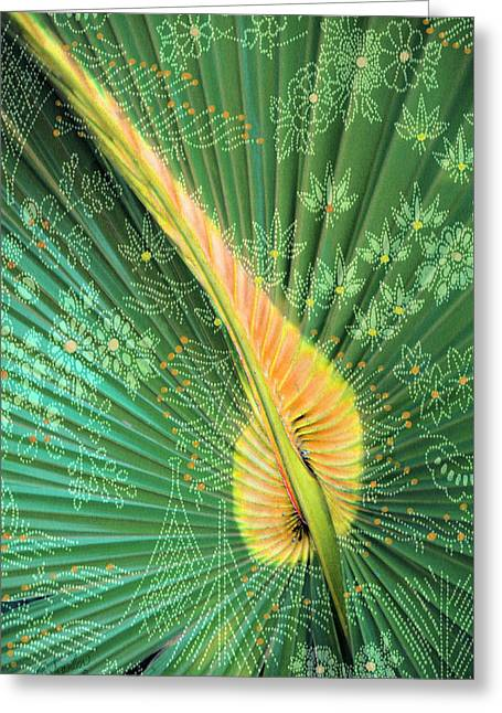 Saw Greeting Cards - Saw Palmetto Color Design Greeting Card by Rosalie Scanlon