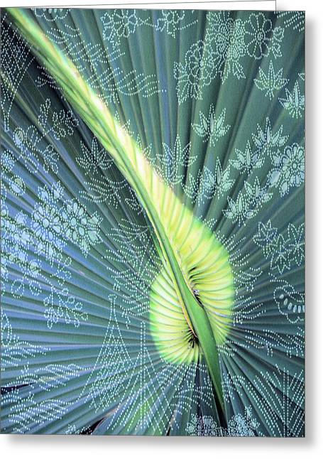 Conservative Greeting Cards - Saw Palmetto Design Greeting Card by Rosalie Scanlon