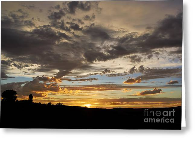 Royal Art Greeting Cards - Sawmill Mesa Sunset Greeting Card by Janice Rae Pariza