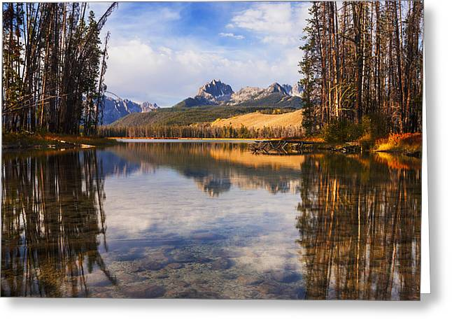 Reflections Of Sky In Water Greeting Cards - Sawtooth mountains through the trees in Stanley Idaho Greeting Card by Vishwanath Bhat