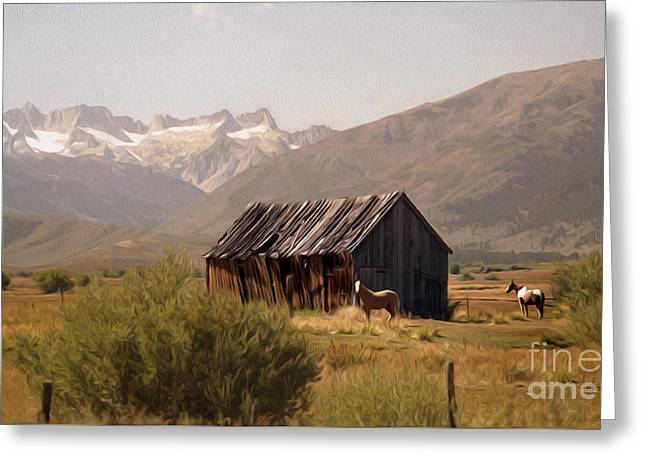 Shack Greeting Cards - Sawtooth Range from Bridgeport Greeting Card by Anthony Forster