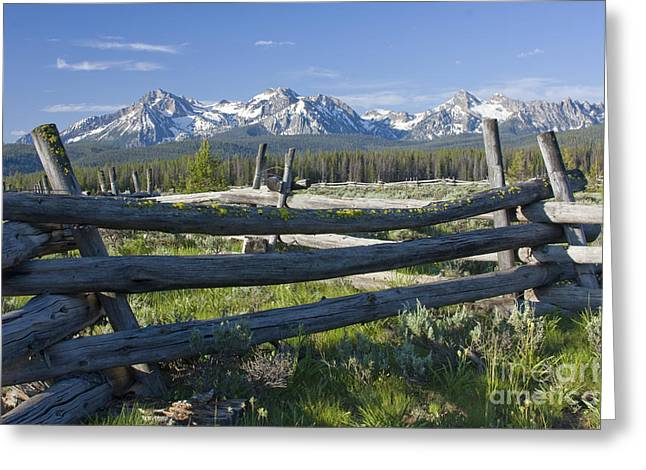 Pnw Greeting Cards - Sawtooth Range Greeting Card by Idaho Scenic Images Linda Lantzy