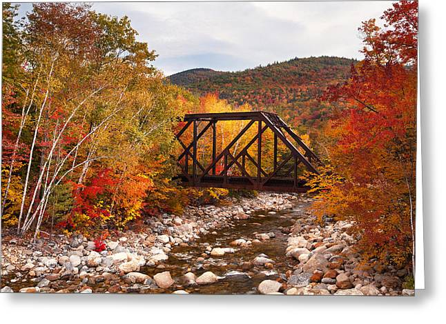 Sawyer River Foliage Greeting Card by Eric Gendron