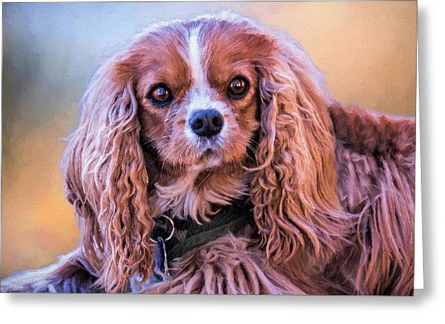 Puppies Photographs Greeting Cards - Say What? Greeting Card by Maria Coulson