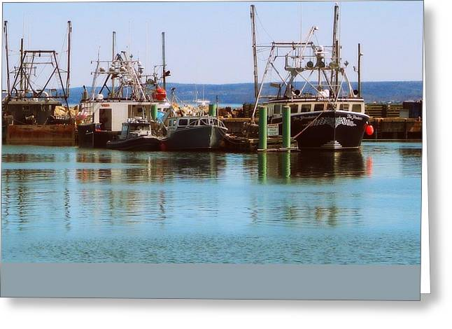 Scallop Days Greeting Card by Karen Cook