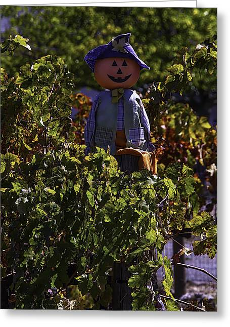 Scarecrow Greeting Cards - Scarecrow In The Vineyards Greeting Card by Garry Gay