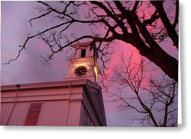 Chatham Greeting Cards - Scarlet 422 Greeting Card by Heather MacKenzie