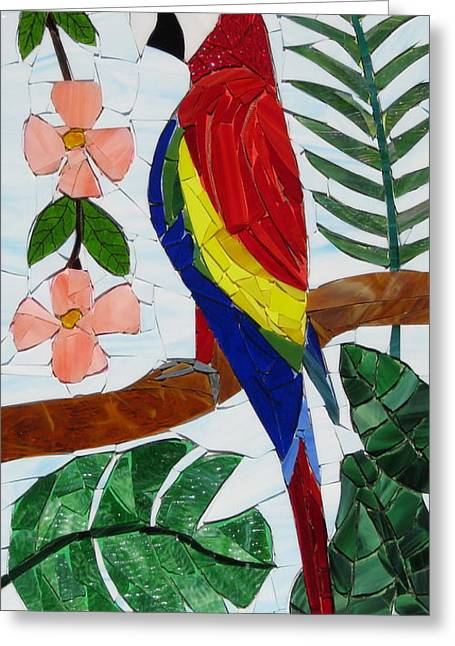 Tropical Stain Glass Glass Art Greeting Cards - Scarlet Macaw Greeting Card by Charles McDonell