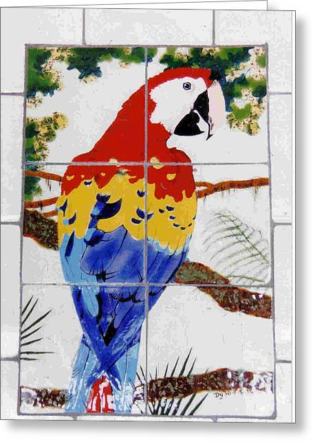 Birds Ceramics Greeting Cards - Scarlet Macaw Greeting Card by Dy Witt