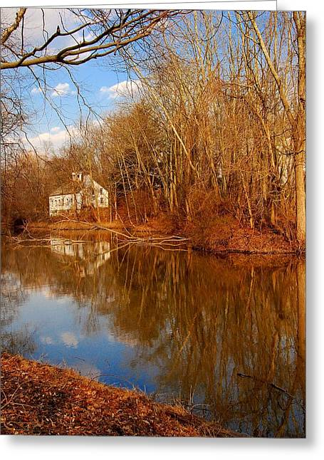 Howell Greeting Cards - Scene in the Forest - Allaire State Park Greeting Card by Angie Tirado