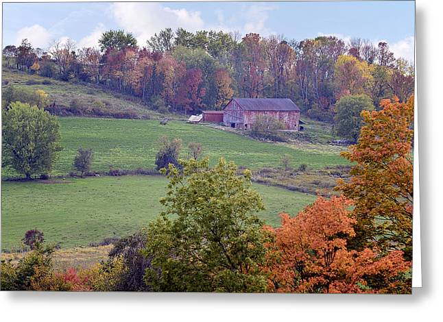 Amish Farms Greeting Cards - Scenic Amish Landscape 1 Greeting Card by Sharon Norman