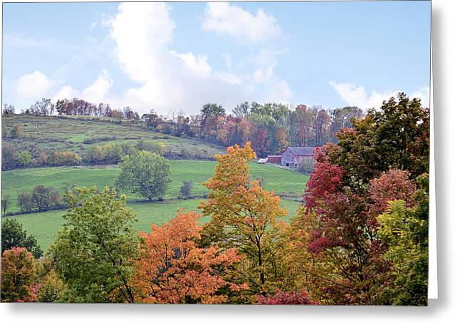 Amish Farms Greeting Cards - Scenic Amish Landscape 5 Greeting Card by Sharon Norman