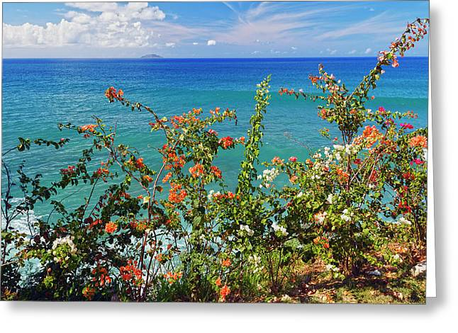 Rincon Greeting Cards - Scenic Coastal View with the Desecheo Island Greeting Card by George Oze