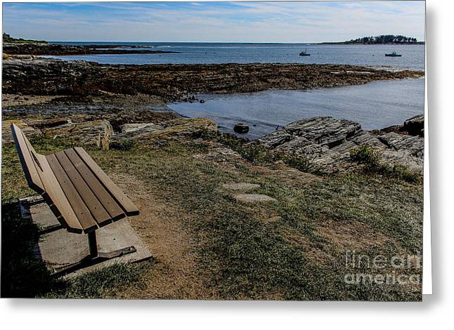 Coastal Maine Greeting Cards - Scenic View at Crescent Beach Greeting Card by Joe Far Photos