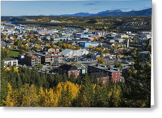 Yukon River Greeting Cards - Scenic View Over Whitehorse, Yukon Greeting Card by Mark Newman
