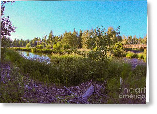 Stream Digital Greeting Cards - Scenic Wandering  Methow Valley Landscapes by Omashte Greeting Card by Omaste Witkowski