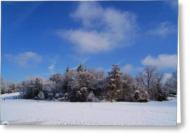 Scenic Winter Greeting Card by Margie Avellino