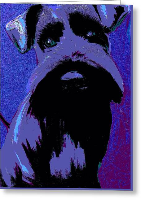 Puppy Digital Art Greeting Cards - Schnauzer Puppy Poster Greeting Card by Karen Harding