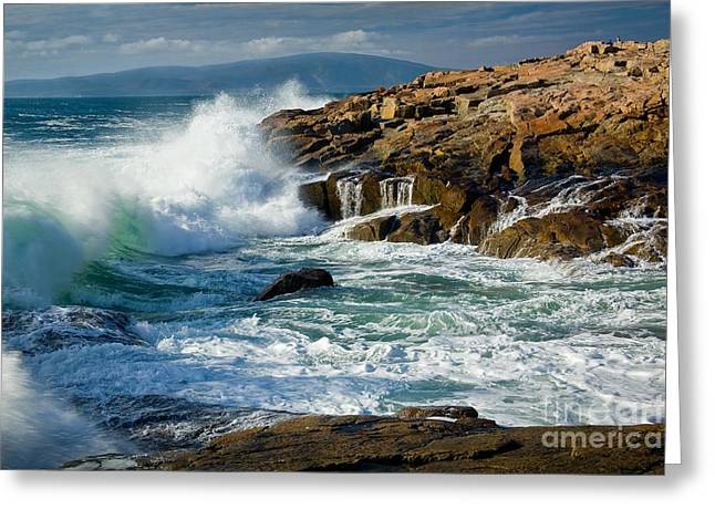 Wild And Scenic Greeting Cards - Schoodic Surf Greeting Card by Susan Cole Kelly