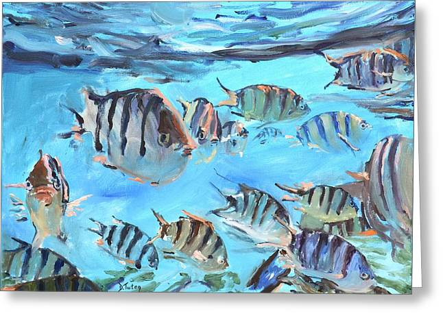 Sea Animals Greeting Cards - School of Sergeant Major Fish Greeting Card by Donna Tuten