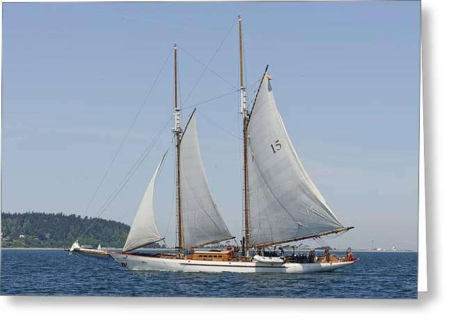 Ocean Sailing Greeting Cards - Schooner Adventuress Greeting Card by Bob VonDrachek