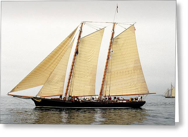Americas Cup Greeting Cards - Schooner America Greeting Card by Fred LeBlanc