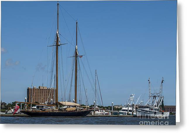 Masts Greeting Cards - Schooner in Port Greeting Card by Dale Powell