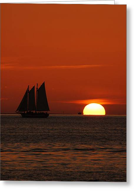 Schooner In Red Sunset Greeting Card by Susanne Van Hulst