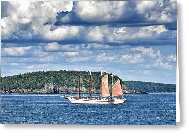Habor Greeting Cards - Schooner Margaret Todd in Bar Harbor Maine Greeting Card by Brendan Reals