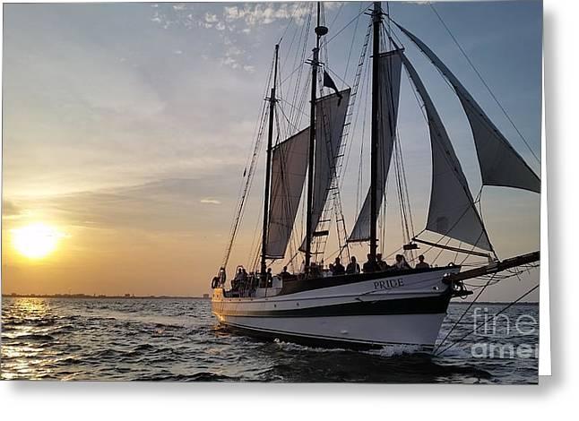 Schooner Greeting Cards - Schooner Pride sunset Charleston South Carolina Greeting Card by Dustin K Ryan