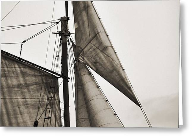 Schooner Pride Tall Ship Yankee Sail Charleston SC Greeting Card by Dustin K Ryan