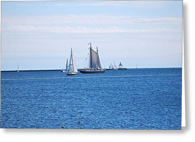 Tall Ship Greeting Cards - Schooners Converge  Greeting Card by Suzanne McDonald