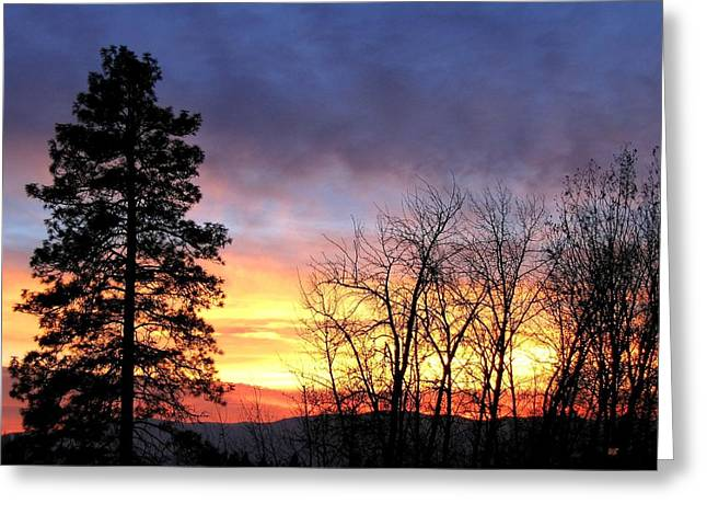 Amazing Sunset Greeting Cards - Scintillating Sunset Greeting Card by Will Borden