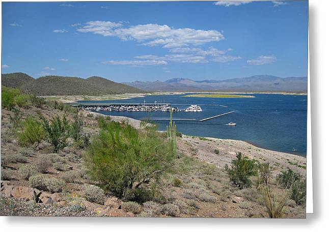 Desert Lake Greeting Cards - Scorpion Bay Marina  Greeting Card by Gordon Beck