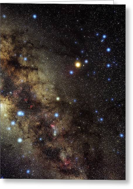 Constellations Greeting Cards - Scorpius Constellation Greeting Card by Eckhard Slawik