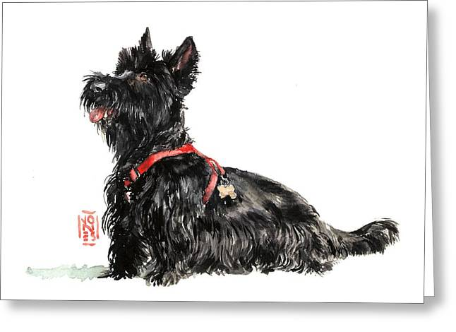 Scottish Terrier Greeting Cards - Scottie Greeting Card by Debra Jones