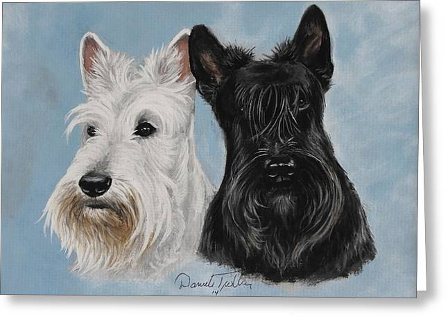 Scottish Terrier Puppy Greeting Cards - Scottish Terrier Greeting Card by Daniele Trottier