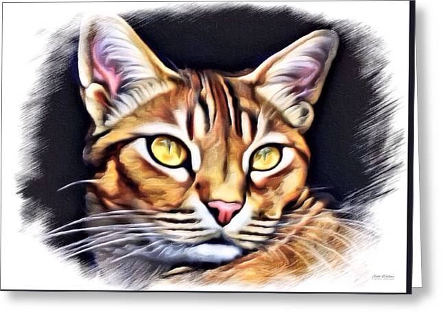 Animals Love Greeting Cards - Scottish Wildcat Color Sketch Greeting Card by Scott Wallace