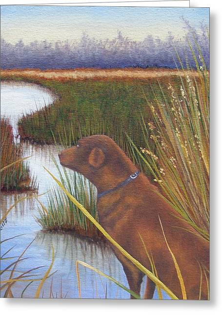 Chocolate Lab Greeting Cards - Scout Greeting Card by Julia Rietz