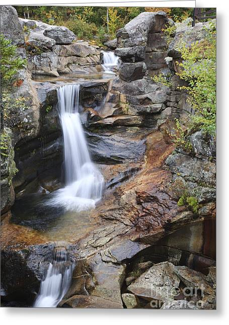 Glacial Potholes Greeting Cards - Screw Auger Falls - Maine  Greeting Card by Erin Paul Donovan