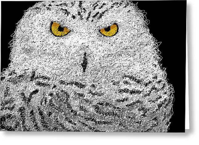 Snowy Night Greeting Cards - Digital Scribble - Snowy Owl Greeting Card by Nathan Shegrud